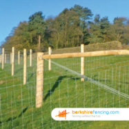 Peeled Round Post and Rail Fence Post