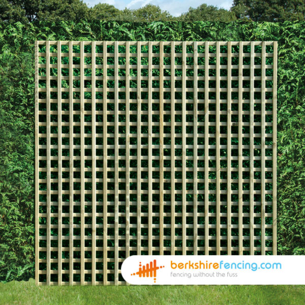 An Example of our Rectangle Planed Square Trellis Fence Panel in London